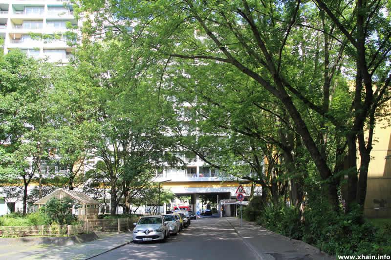 Brandesstraße, Blickrichtung Lindenstraße