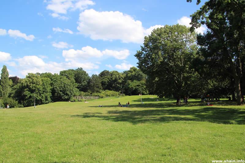 Liegewiese im Viktoriapark