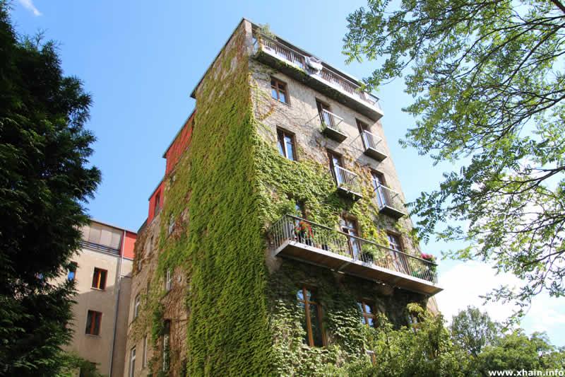 Bewachsenes Haus an der Kleinen Parkstraße