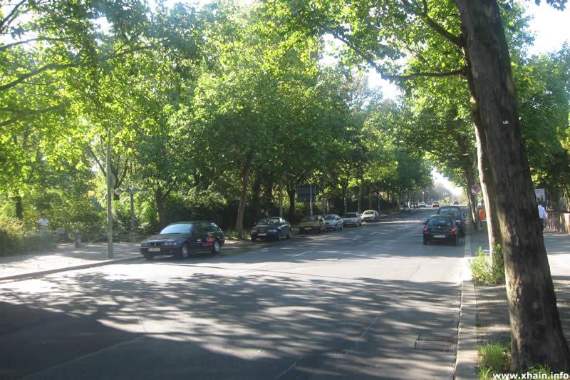 Prinzenstraße, Blickrichtung Baerwaldbrücke