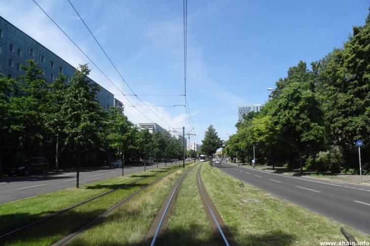 Rasengleis der Straßenbahn in der Mollstraße
